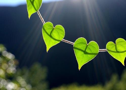 Kaip atidaryti širdį, širdies čakrą